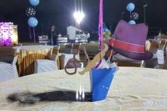 Bowtie 3D Birthday Themes-3