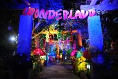 wonderland 3d birthday party themes-3-min-min